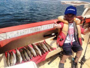 Whiting caught off a hire boat at Yaringa